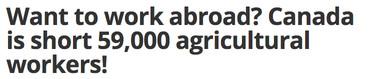 werken in het buitenland landbouw